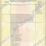 Сертификат Игровые комплексы Page2