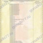 Сертификат Игровые комплексы Page3