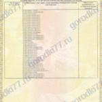 Сертификат Игровые комплексы Page4